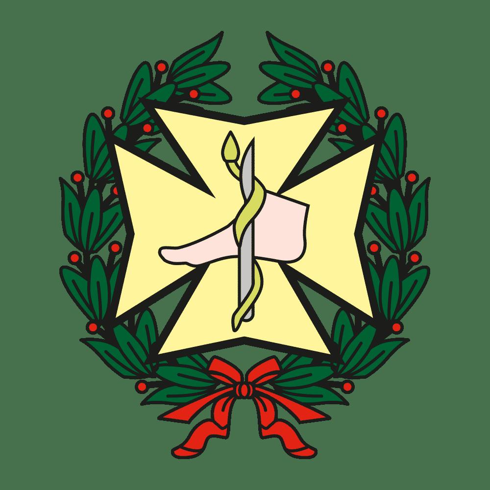 consejo-general-de-podologos-españa.png